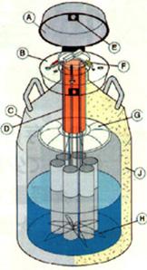 液体窒素タンクの構造